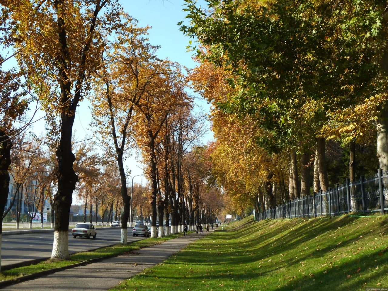 Синоптики рассказали о погоде на 13 октября