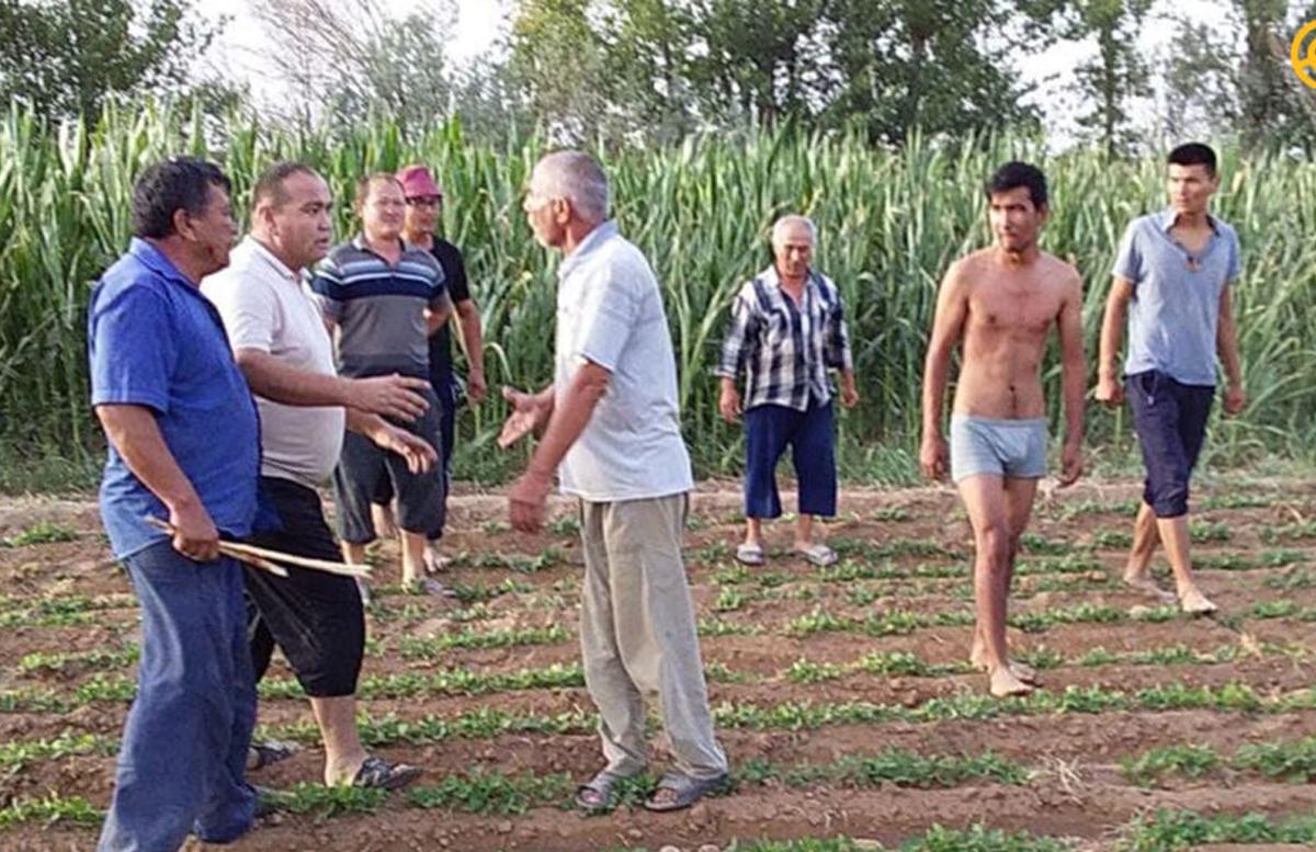 В Сурхандарье подрались семьи директоров двух школ