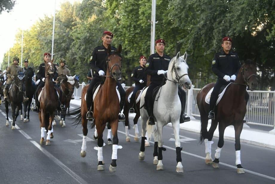 По всей республике появятся школы конного спорта