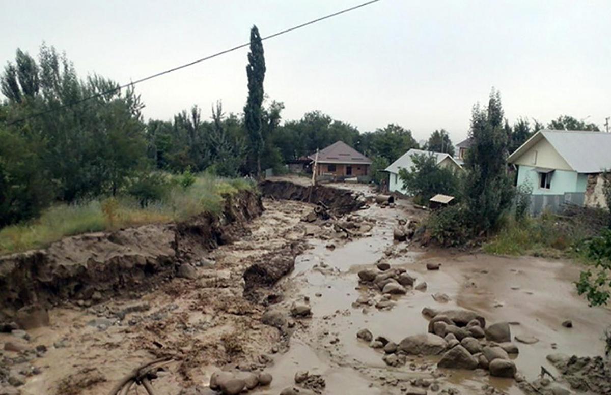 Затоплены подвалы и десятки домов: В МЧС рассказали о последствиях селя в Ферганской области