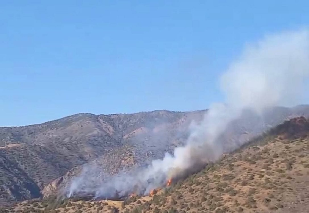 В Зааминских горах вновь вспыхнул пожар