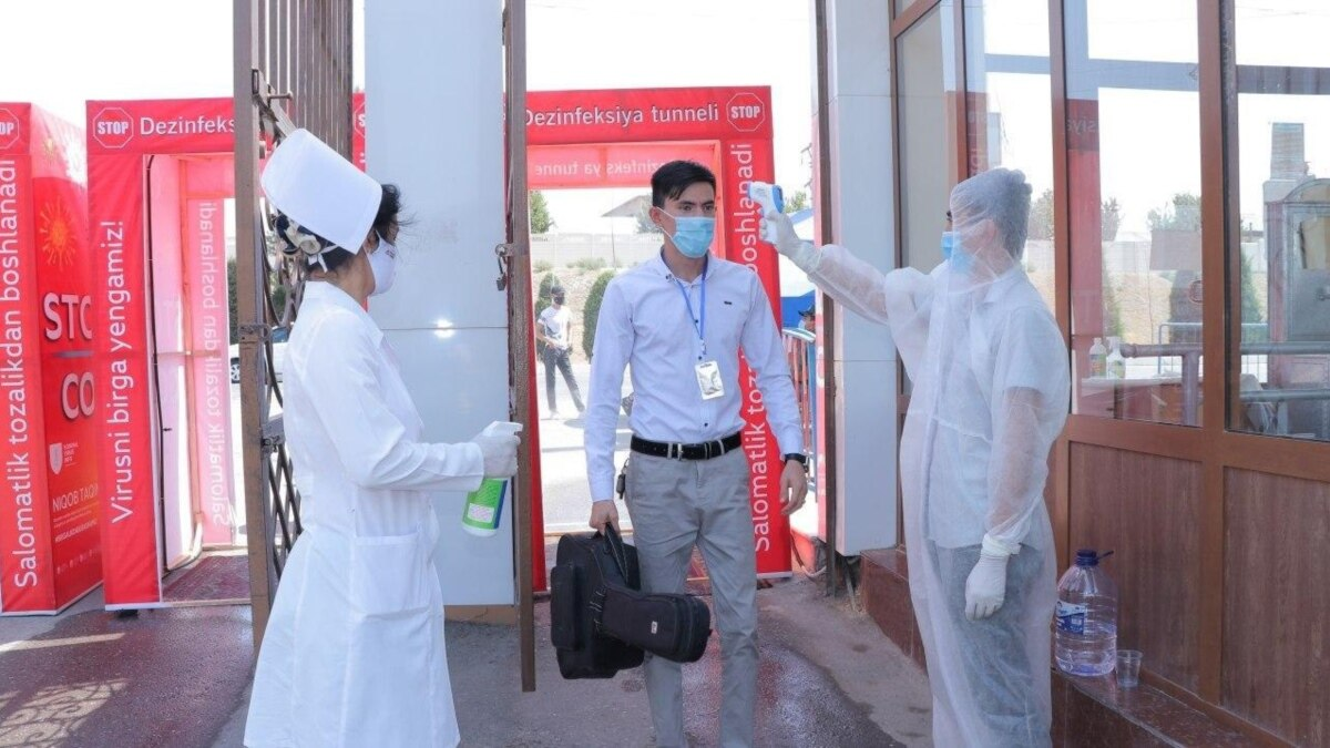 В Узбекистане за сутки выявили еще 925 случаев COVID-19