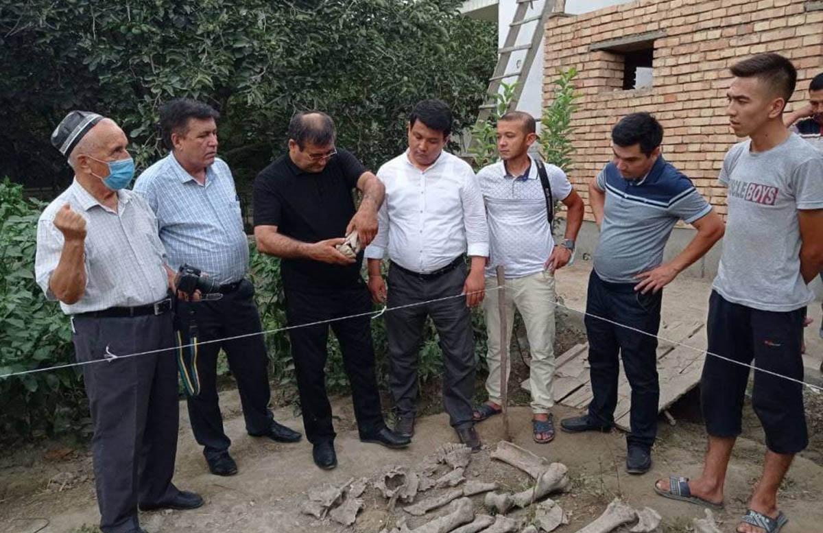 В Фергане найдены останки неизвестного животного