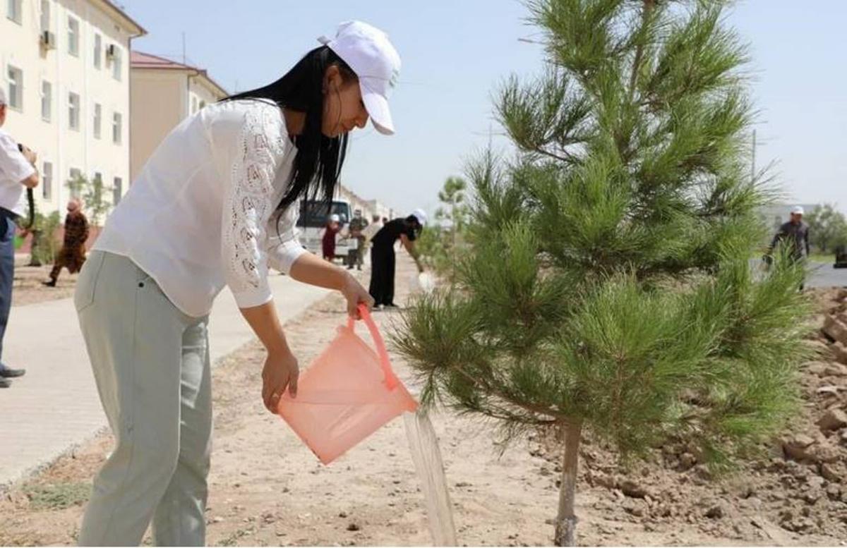 В Сурхандарье стартовала акция по поливу деревьев