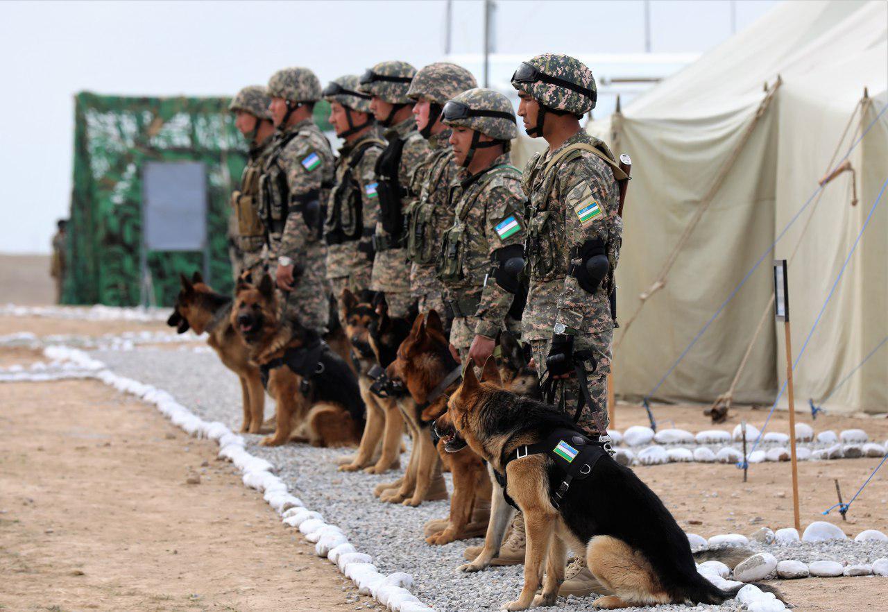 Узбекистан взял границу с Афганистаном на усиленный контроль