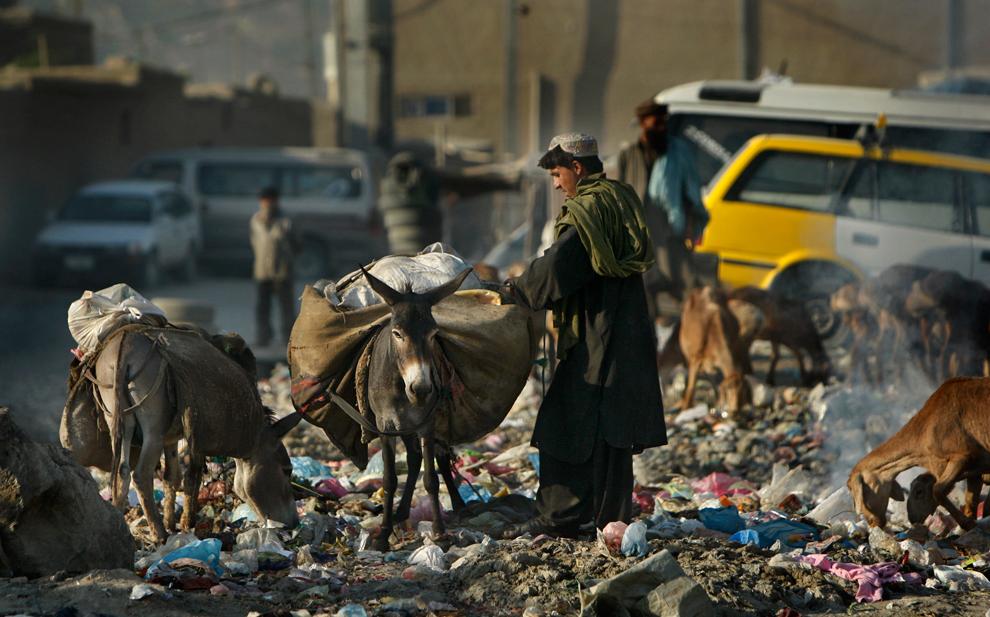 Приход к власти боевиков «Талибана» разоряет не только Афганистан