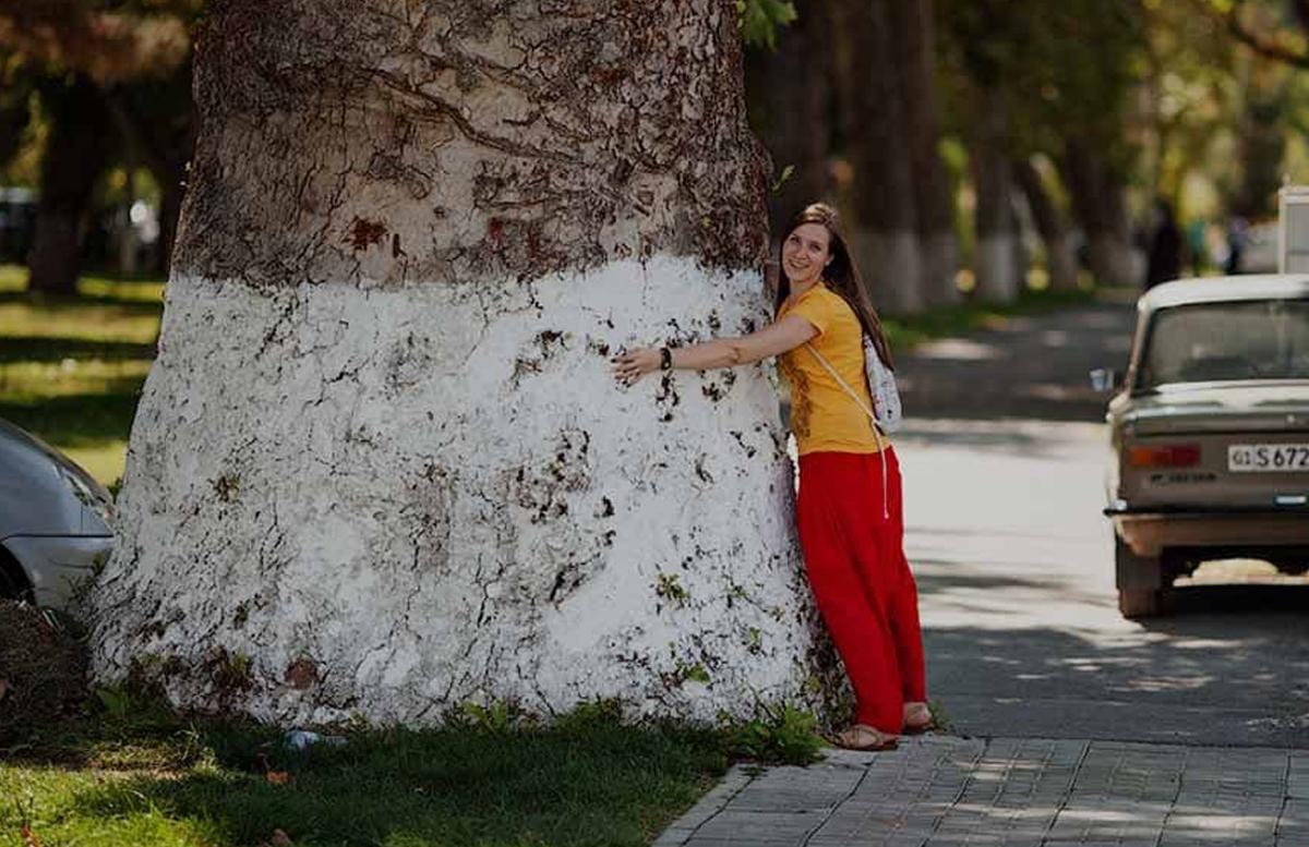 В Узбекистане продлили мораторий на вырубку деревьев до 2024 года