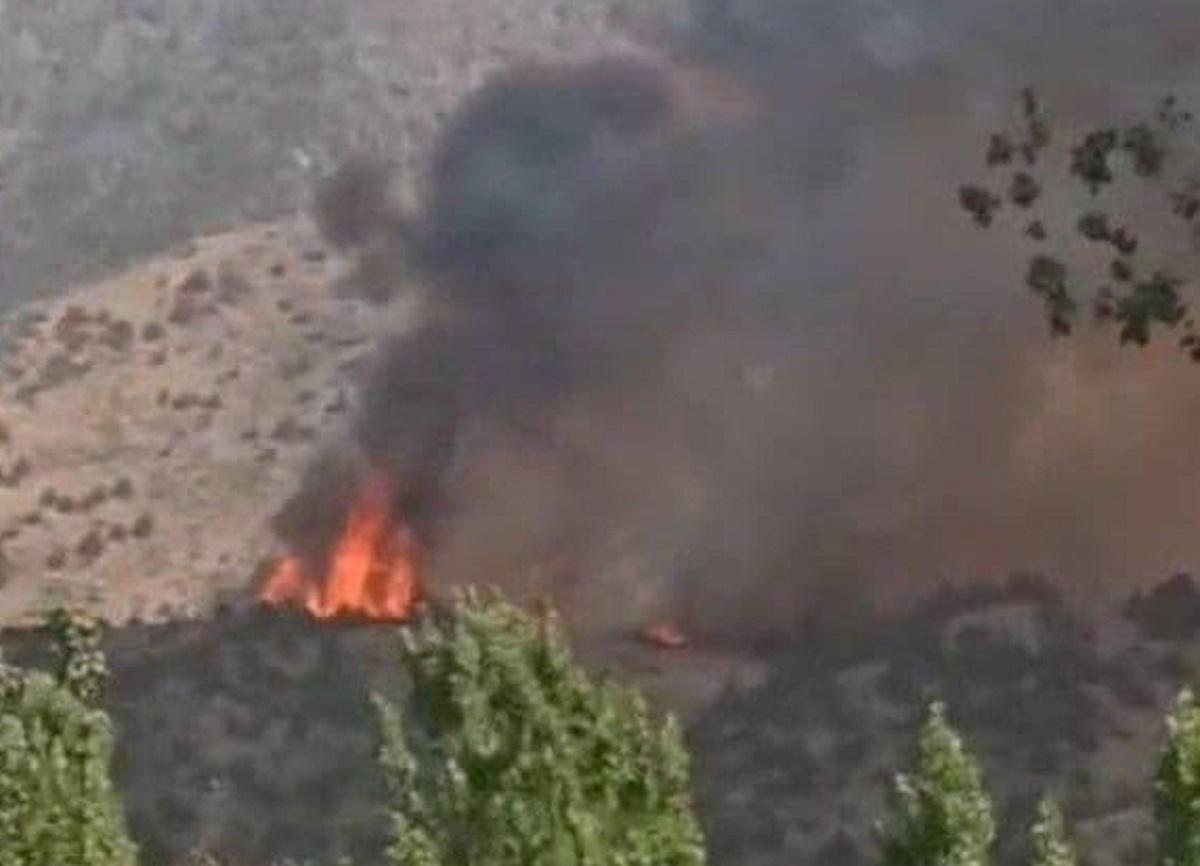 Шавкат Мирзиёев назвал виновного в пожаре в горах Заамина