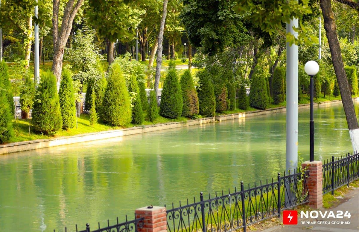 Уровень озеленения столицы решили довести до 30%