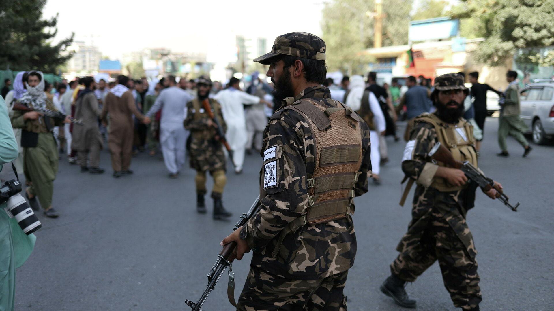Лидер талибов заявил, что в Афганистане будут действовать законы шариата
