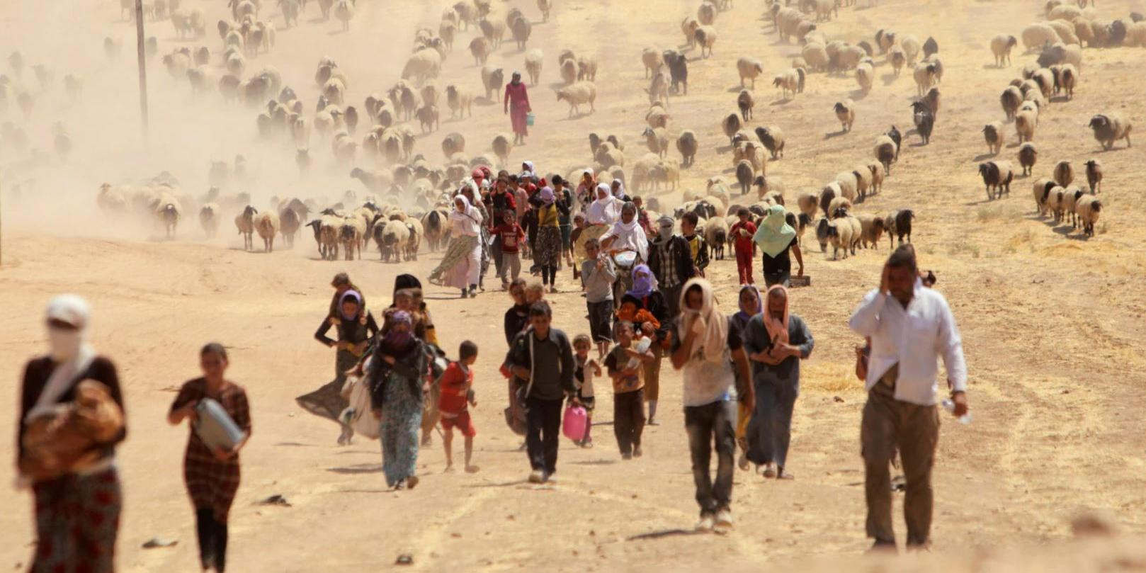 «Наплыв будет трудно сдержать»: Ташкент и Москва обсудили проблему беженцев из Афганистана