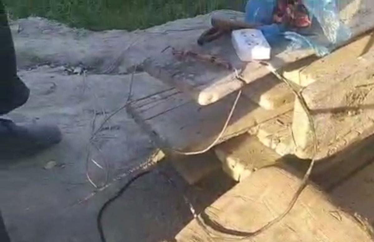 В Бухаре мужчина облепил оголенные провода мясом для убийства бродячих животных — видео