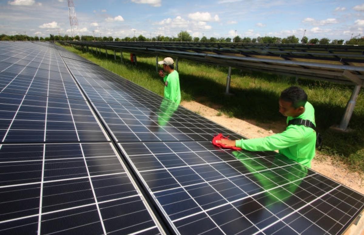 Выяснились направления развития «зеленой экономики» в стране