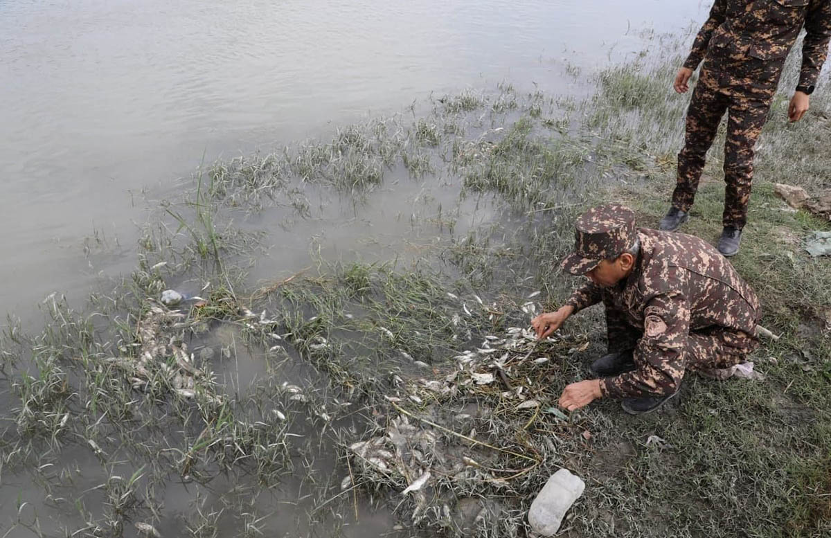 В Навоийской области отходы одного из предприятий отравили реку